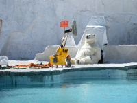 fibreglass icebergs with polar bear - film set design cape town