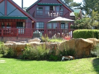 Beautiful Rock Koi Pond with landscaping Cape Town