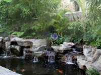 engineered rock water falls and koi pond