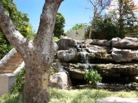 Water Feature Entranceway  with Koi Pond Cape Town