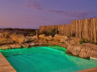 rock-pool-cape-town-web