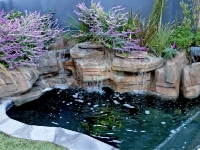 beautiful rock pool